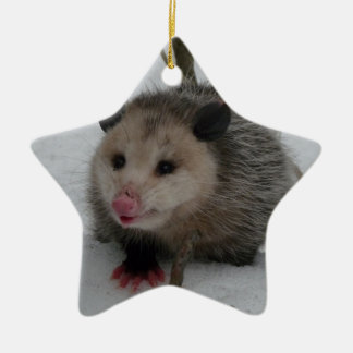 Snow Possum Ceramic Star Ornament