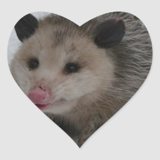 Snow Possum Heart Sticker