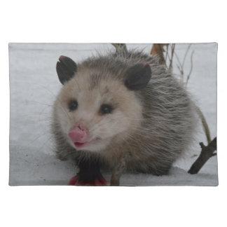 Snow Possum Placemat