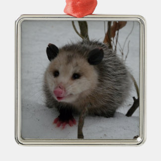 Snow Possum Silver-Colored Square Ornament