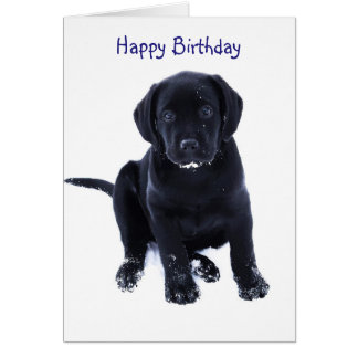 Snow Puppy - Black Labrador Card