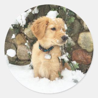 Snow Puppy - Lab puppy Classic Round Sticker