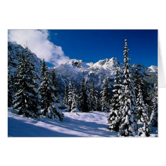 Snow Scene Winter Mountains Blank Greeting Card