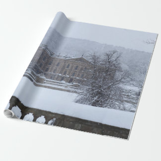 Snow Seen Wrapping Paper