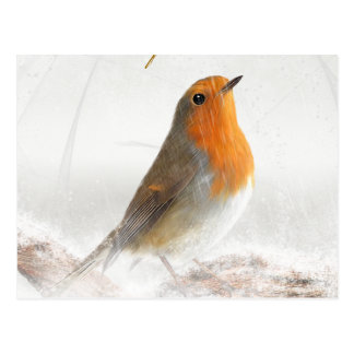 Snow Shower Robin Redbreast Postcard