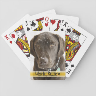 Snow Sprinkled Chocolate Lab Photograph Playing Cards