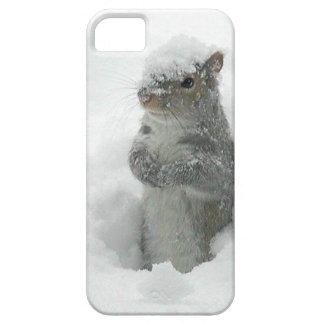 Snow Squirrel iPhone 5 Case