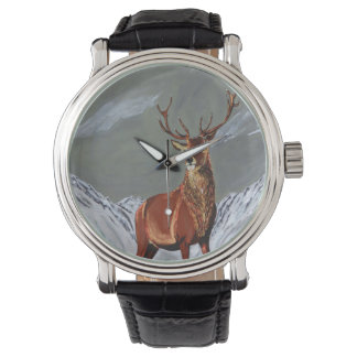 snow stag watch