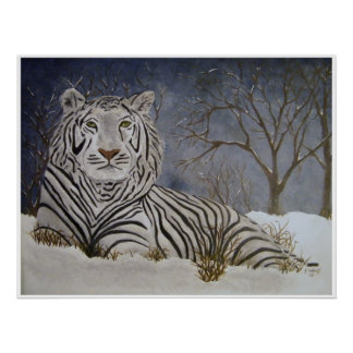 Snow Tiger Poster