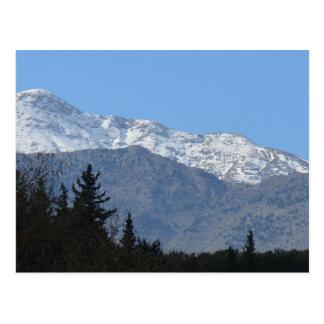 Snow Topped White Mountains Postcard