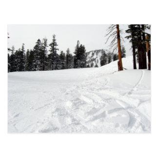 Snow Trails Ski & Snowboard Postcard