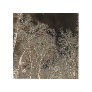 Snow Trees Inverted Wood Print