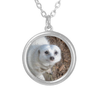 Snow_White_Meerkat,_ Silver Plated Necklace