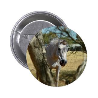 Snow White The Horse,_ 2 Inch Round Button