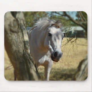 Snow White The Horse,_ Mouse Pad