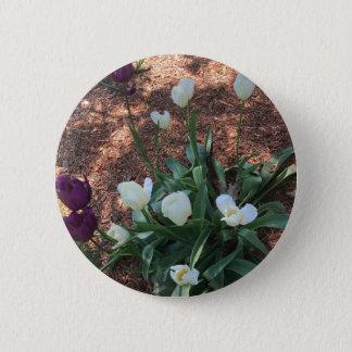 Snow white tulip type flowers in a garden 2 inch round button