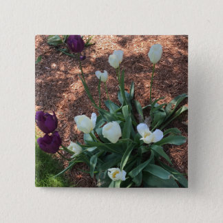 Snow white tulip type flowers in a garden 2 inch square button