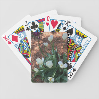 Snow white tulip type flowers in a garden bicycle playing cards