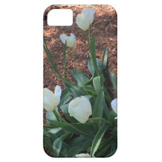 Snow white tulip type flowers in a garden iPhone 5 cover