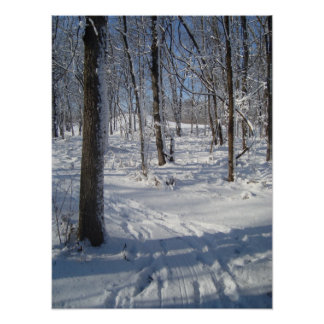Snow Woods Poster
