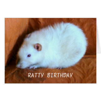 Snowball White Rat Custom Greeting Card