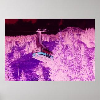 Snowbird Dream Poster