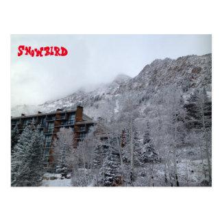 Snowbird Postcard