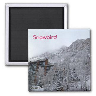 Snowbird Square Magnet