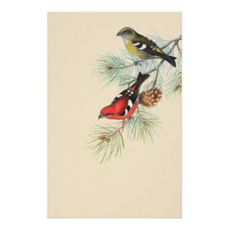 Snowbirds on Tan Stationery