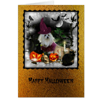 Snowdrop the Maltese Halloween Greeting Card