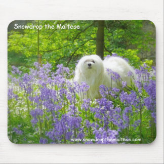 Snowdrop the Maltese Mouse Pad
