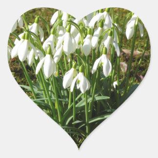 Snowdrops 02.2 (Schneegloeckchen) Heart Sticker