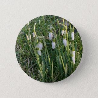 Snowdrops Button
