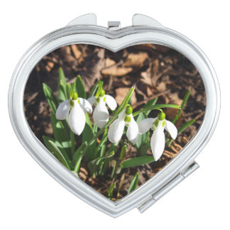 Snowdrops in the sunshine mirror for makeup