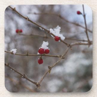 Snowed Berries Coaster