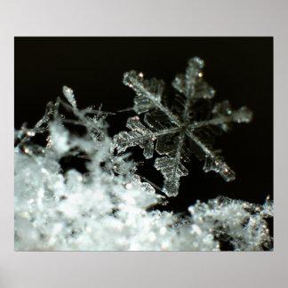 Snowflake 2009 Blizzard Poster