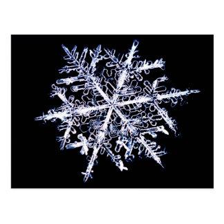 Snowflake 9 postcard