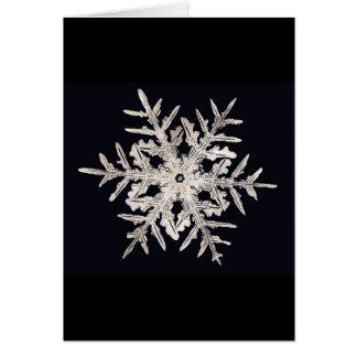 Snowflake Bentley Genius Xmas Card