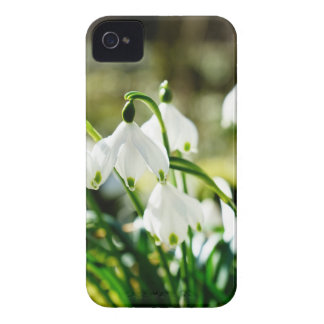 snowflake Case-Mate iPhone 4 cases