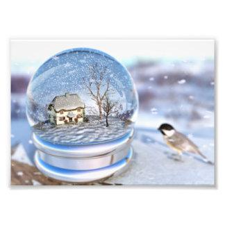 Snowflake Globe Photo Print