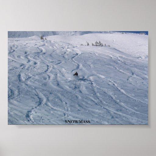 Snowmass Poster