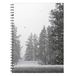 snows notebooks