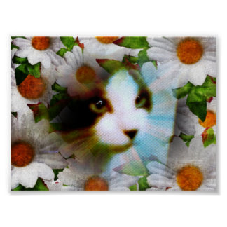 snowshoe canvas kitty poster