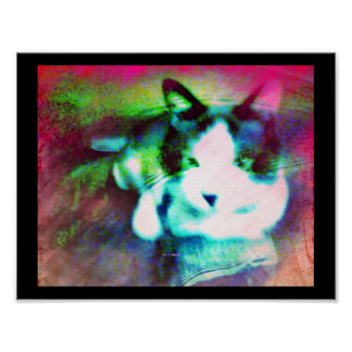snowshoe mixed media kitty poster