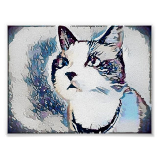 Snowshoe Winter Dreaming Kitty Poster