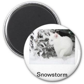 Snowstorm 2 Inch Round Magnet