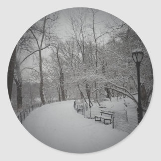 Snowstorm, Central Park, New York City Round Sticker