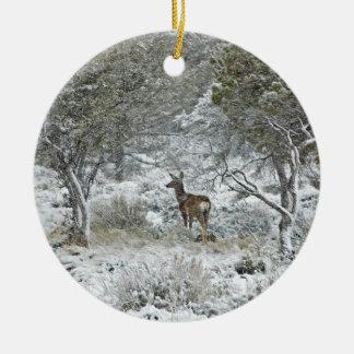Snowstorm Ceramic Ornament