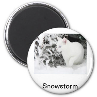 Snowstorm Magnet