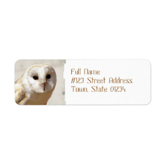 Snowy Barn Owl Mailing Labels